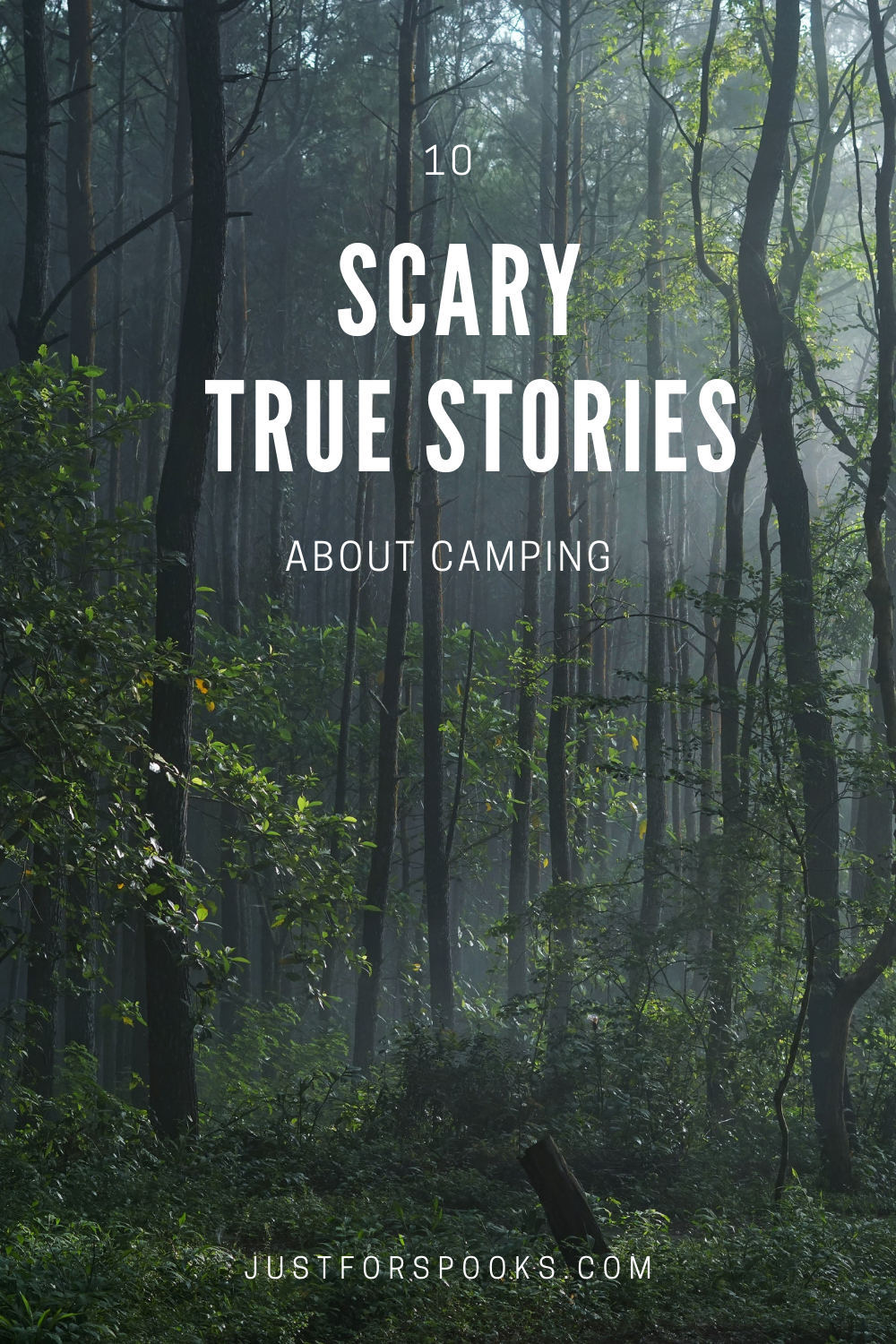 10 scary true stories about camping