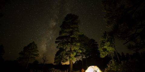 Scary True Stories About Camping